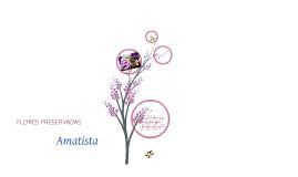 Copy of Plan de negocios, flores amatista