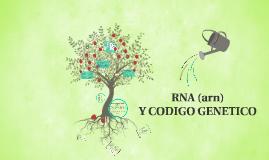 Copy of (ARN) SINTESIS DE PROTEINA Y CODIGO GENETICO