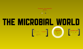 The Microbial World