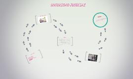 SEGURIDAD JUDICIAL