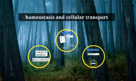 homeostasis and cellular transport