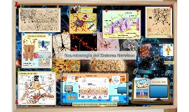 Neurobiologia del Sistema Nervioso