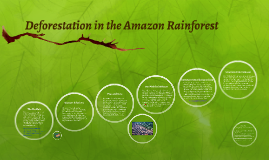 Deforestation in the Amazon Rainforest