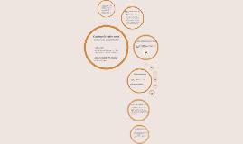 Copy of Cadena de valor en el comercio electrónico
