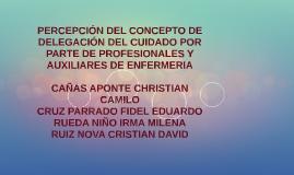 PERCEPCIÓN DEL CONCEPTO DE DELEGACIÓN DEL CUIDADO POR PARTE