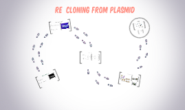 RE  Cloning from plasmid