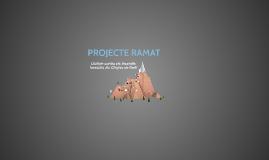 PROJECTE RAMAT