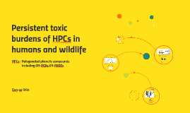 Persistent toxic burdens of halogenated phenolic compounds i