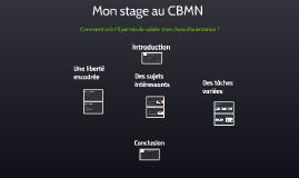 Mon stage au CBMN