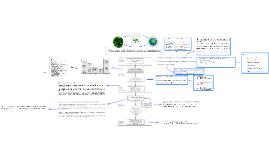 Proceso del diseño para el ambiente