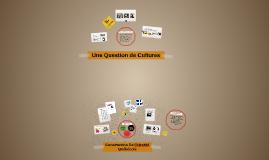 Chapitre 11 - Sociologie FLS