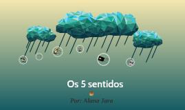 Os 5 sentidos no Pantanal