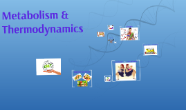 Metabolism & Thermodynamics