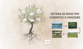 Copy of SISTEMA DE RIEGO POR SUPERFICIE O GRAVEDAD