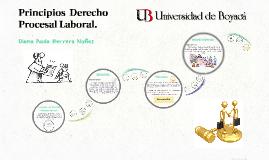 Principios del Derecho Laboral.