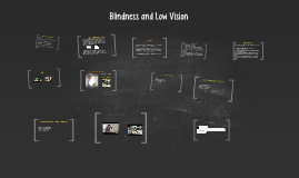Copy of Blindness and Low Vision