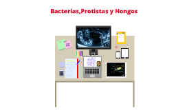 Copy of Bacterias, Protistas y Hongos. Carlitos Mersié