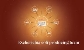Escherichia coli producing toxin