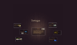 Copy of Tortugas