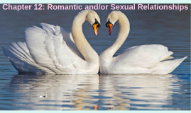 Chapter 12: Romantic and/or Sexual Relationships