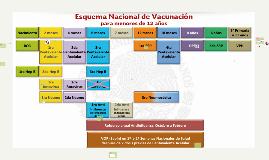 6.1.1.1 La vacuna BCG se utiliza en la prevención de las for
