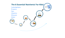 6 essential nutrients! For kids! by Linsey Allen on Prezi