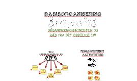 BASISORGANISERING