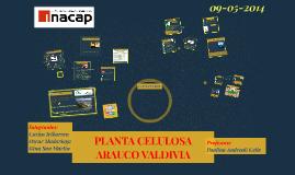 Copy of PLANTA CELULOSA ARAUCOO VALDIVIA