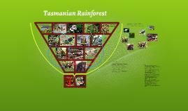 Tasmanian Rainforest