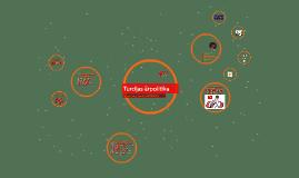 Turcijas ārpolitika