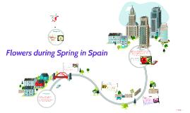 Flowers during Spring in Spain
