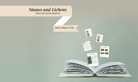 Copy of Copy of Copy of Literature Lesson