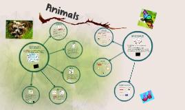 Animal Kingdom (Unit 1)