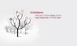 Arandanos y Olivos