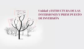 Unidad 5 ESTRUCTURA DE LAS INVERSIONES Y PRESUPUESTO DE INVE