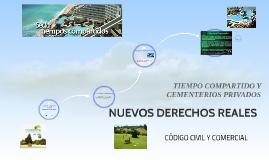 Copy of NUEVOS DERECHOS REALES