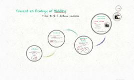 Toward an Ecology of Vidding
