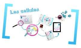 Les cellules
