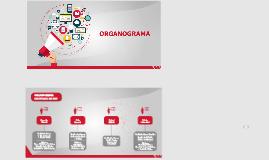 Organograma MKT