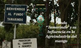 """Copy of Fundo """"Tamarindo"""" y su Influencia en la Agroindustria del ma"""