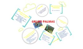 Proyecto Grupo Palmas