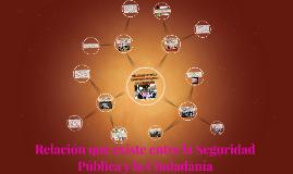 RELACION ENTRE LA SEGURIDAD PUBLICA Y LA CIUDADANIA
