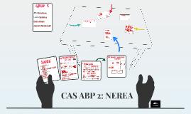 CAS 2: NEREA
