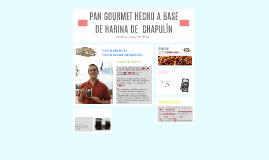 PAN ARTESANAL HECHO A BASE DE HARINA DE  CHAPULÍN