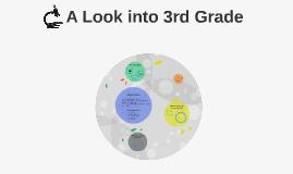A Look into 3rd Grade