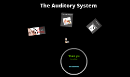 Cochlear Implants and the Auditory System