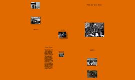 Copy of Immigration through Ellis Island