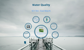 Water Quality SCH 3U1 - Welland