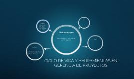 CICLO DE VIDA Y HERRAMIENTAS EN GERENCIA DE PROYECTOS