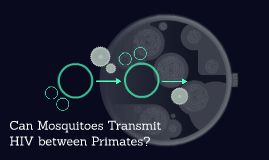 Can Mosquitoes Transmit HIV between Primates?